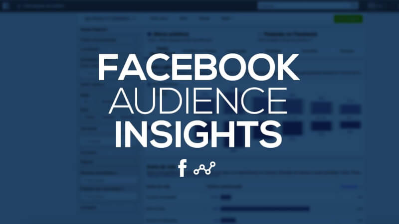 facebook audience insights  definition